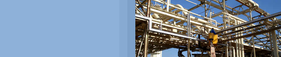 Your Local partner in Oil & Gas Sector